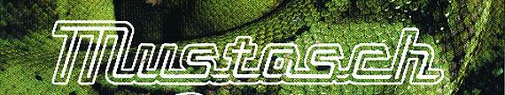 Mustasch_logo_2.jpg