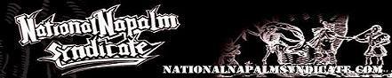 NNS - old logo.jpg