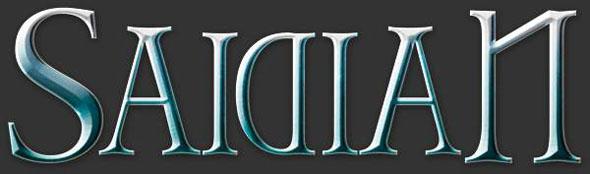 saidian_logo_1.jpg